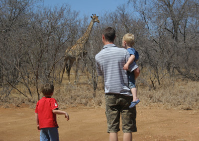 Giraffe Watching
